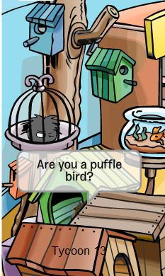 Puffle Bird